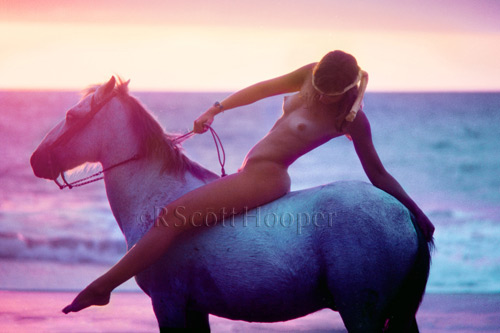 Nude on a Spanish horse on the beach at sunset