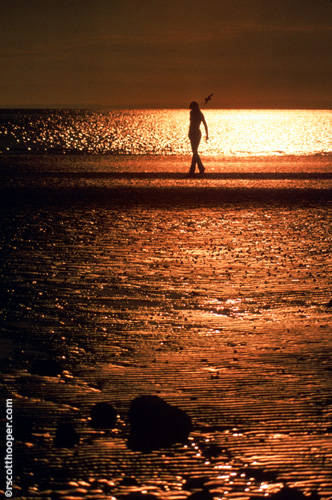 Photo of girl walking in the sunset on the beach